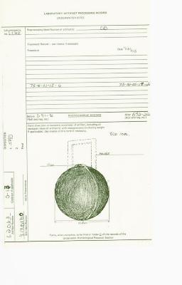 State Artifact Processing Record